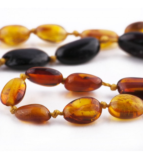 Amber Adult necklace Bean Polished Rainbow